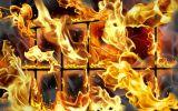 fogo ardente