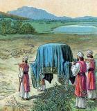 transportando a arca
