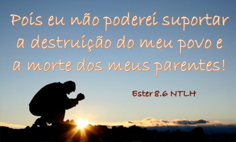Ester8_6